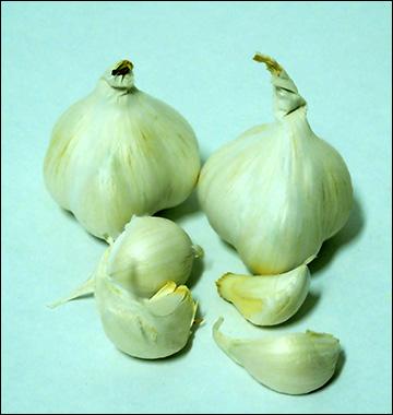 aglio bianco